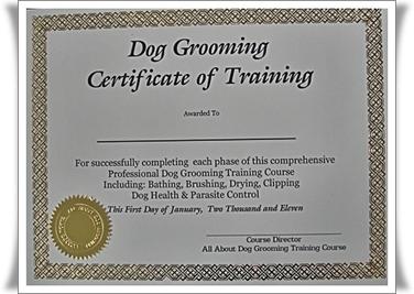 Dog Groomer Certification Architecture Modern Idea