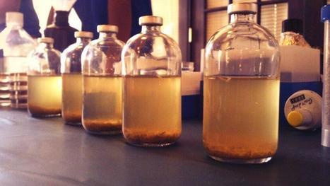 Twitter / sdsmt: Converting biomass into ... | biorenewable energy | Scoop.it