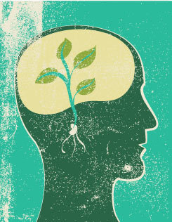 Neuroplasticity: Learning Physically Changes the Brain | Edutopia | UDL & ICT in education | Scoop.it