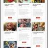 Free Download WordPress Premium Themes