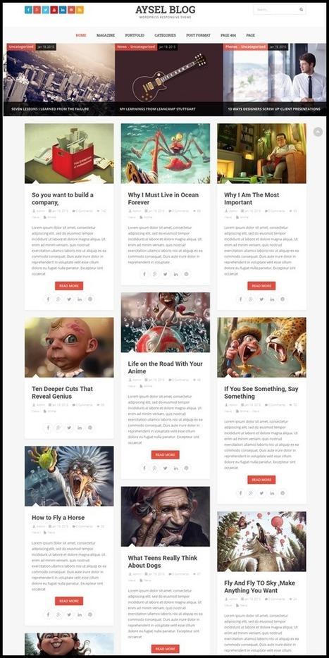 Free Download WordPress Premium Themes | Scoop.it