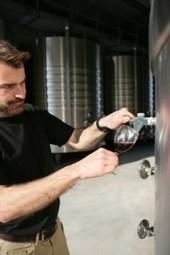 La production de vin 2013 en Bourgogne - Patrimoine Grands Crus | Cyril Bladier Fooding | Scoop.it