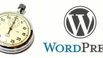 Le top 50 des Thèmes WordPress les + vendus : sont-ils rapides ? | Gestion de projet web | Scoop.it