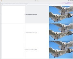 How to Display an Image in Devexpress XtraGrid