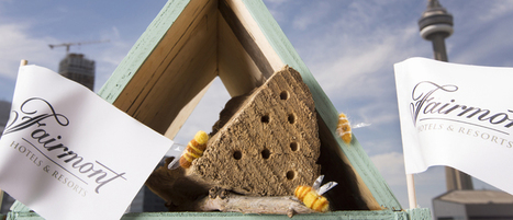 Des hôtels pour abeilles | For a more sustainable marketing ... | Scoop.it