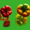 Alimentation-agro-alimentaire