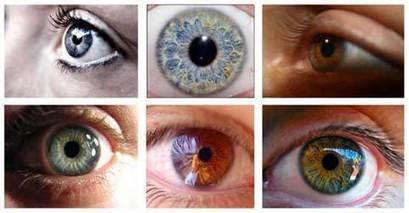 Cómo corregir el síndrome del ojo seco al mirar pantallas de ordenador o teléfono | SALUD OCULAR: GAFA TÉCNICA, OJO SECO Y DEPORTE GRADUADA | Scoop.it