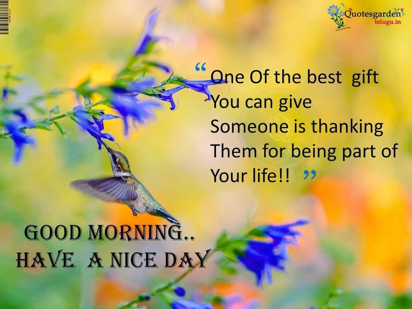 English Good Morning Quotes For Friends Images