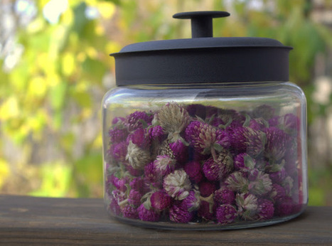 From the Soil: Jar Full of Summer | Annie Haven | Haven Brand | Scoop.it