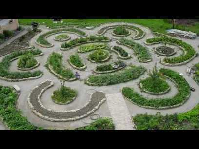 Understanding patterns in nature with permaculture | Transition Culture | Scoop.it