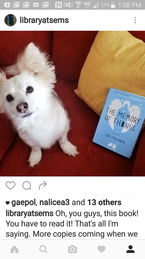 10 Ways to Feed Your Library Instagram | Nonprofit Storytelling | Scoop.it