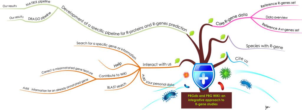 database plant resistance gene wiki 2013 p