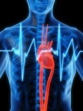 Irregular Heartbeat Linked to Problems with Memory, Thinking - PsychCentral.com (blog) | Lifestyle behaviours and cognition | Scoop.it