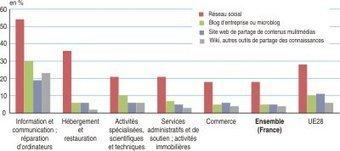 Insee - Entreprises - L'usage d'Internet par les sociétés en 2013: un recours minoritaire aux médias sociaux | Entreprise et Stratégie Digitale | Scoop.it