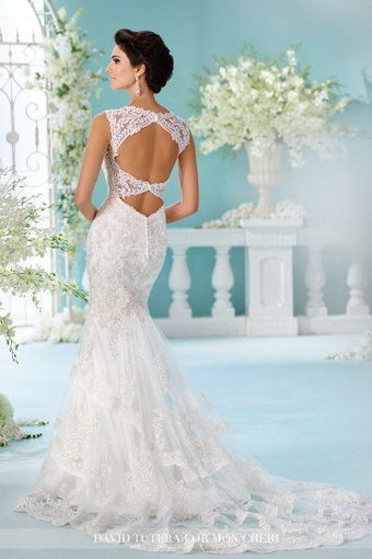 david tutera for mon cheri 216246\' in sophia tolli bridal gown ...