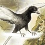 Prehistorische dieren waren kleurrijk | Kosmisch concreet | Scoop.it