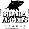 Veille sur l'actualité des requins
