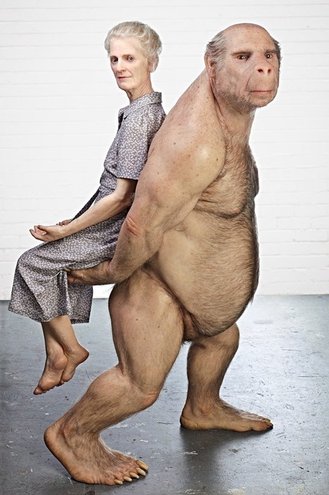 The Carrier by Patricia Piccinini | Art Installations, Sculpture, Contemporary Art | Scoop.it