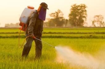 Glyphosate gets five-year respite as license renewed