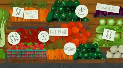 Thanksgiving: Supermarkets And Fair Food | Design in Education | Scoop.it