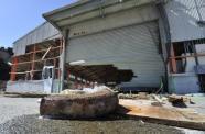 Japon: reprise de la pêche à la baleine avec l'équipage d'un village dévasté   AFP   Japon : séisme, tsunami & conséquences   Scoop.it