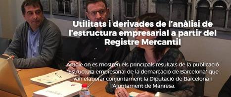 Utilitats i derivades de l'anàlisi de l'estructura empresarial a partir del Registre Mercantil