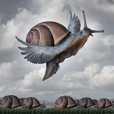 4.51 L'Entreprises libérée : Quand l'imaginaire tente de se frayer un chemin dans les normes des sciences de gestion ... | d'un trait, créer son chemin | Scoop.it