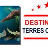 Culture Finistère Brest