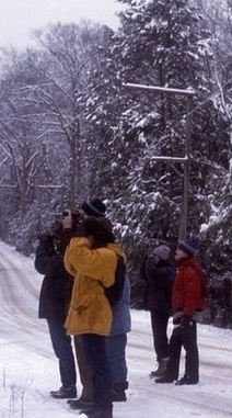 About the Christmas Bird Count   National Audubon Society Birds   Citizen Science in Action   Scoop.it