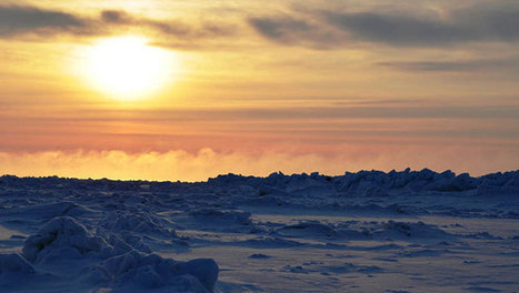 Arctic sea ice peak is 5th lowest on record   All about water, the oceans, environmental issues   Scoop.it