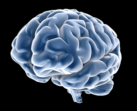 Greater brain activation after cognitive rehabilitation for MS | Psychology and Brain News | Scoop.it