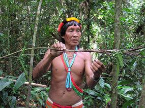 How rainforest shamans treat disease | health & medicine in philosophy & culture | Scoop.it