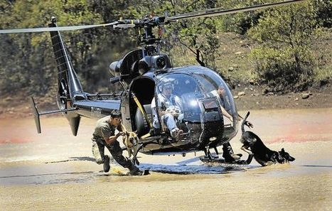 SA's dogfight to save rhino | What's Happening to Africa's Rhino? | Scoop.it