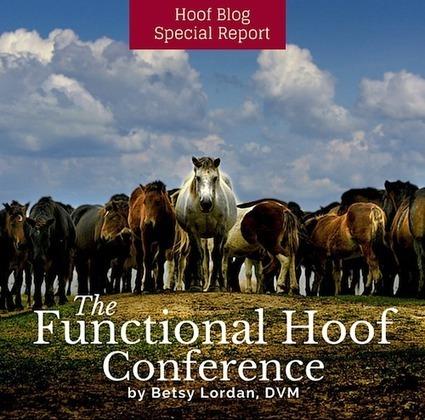 Fran Jurga`s Hoof Blog:  Guest Report: Australia's Functional Hoof Conference | Hoofcare and Lameness | Scoop.it