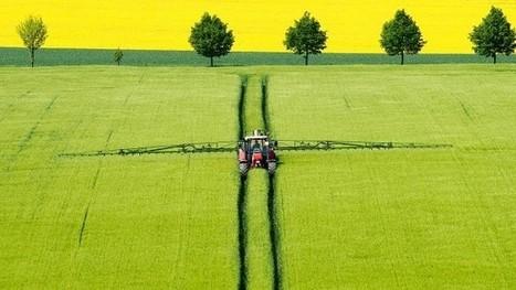 Zukunft der Landwirtschaft: Große Sorge ums Essen | Agrarforschung | Scoop.it
