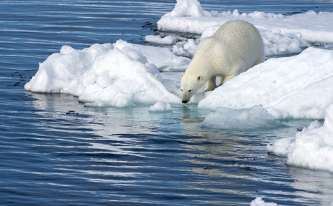 Climate Change May Be Doubted by Some, But Now It's the Law | Upsetment | Scoop.it