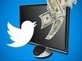 Un compte Twitter hacké rapporte plus qu'un numéro de carte de crédit volé   Entrepreneurs du Web   Scoop.it