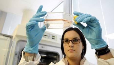 Recherche sur l'embryon: le grand-écart européen | L'actualité en Europe | Scoop.it