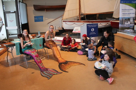 Halifax Mermaids | All about water, the oceans, environmental issues | Scoop.it