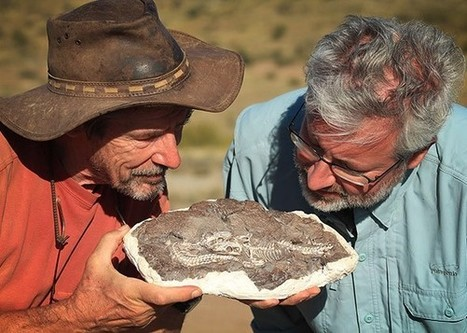 The Darwin Fish Is a Real Fossil, and Creationists Hate It | Science, Technology & Education | Scoop.it