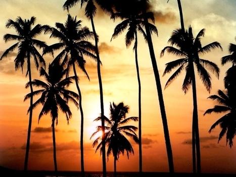 Brazil's hidden beaches and lagoons - Brad Beach | brazilianspirit | Scoop.it