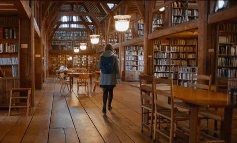 The Library : une magnifique histoire de bibliothèque, de livres et d'amour | Bibliothèques et Cie | Scoop.it