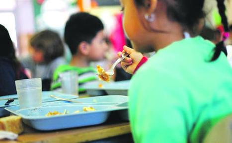 Las familias piden 2.957 becas de comedor para el nuevo curso
