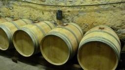 Château Majoureau. Une propriété en Côtes de Bordeaux Saint ... | Oenotourisme en Entre-deux-Mers | Scoop.it