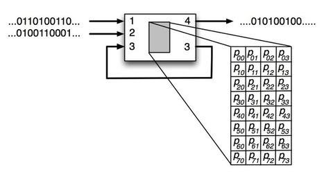 Markov Network Brains | Complex Insight  - Understanding our world | Scoop.it