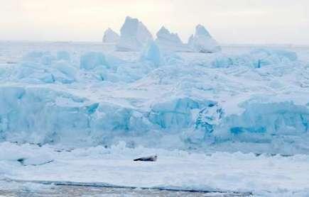 Scientists launch unprecedented Antarctic research mission | Antarctica | Scoop.it