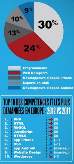 Le Top 5 des métiers IT et le Top 10 des compétences IT les plus demandées en Europe en 2012 | Entretiens Professionnels | Scoop.it