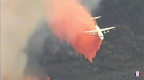 Sécheresse en Californie : 100 millions d'arbres sont morts | AmeriKat | Scoop.it