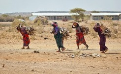 Over 11 Million East Africans Homeless and Hungry, Says UN | Food & Nutrition Security in East Africa | Scoop.it