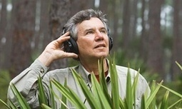'A great silence is spreading over the natural world' | Environmental sounds | Scoop.it